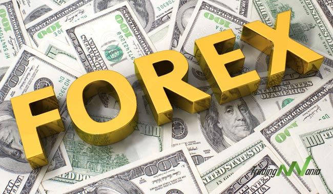 Forex market news option trading