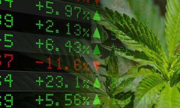 Come investire nella Cannabis?
