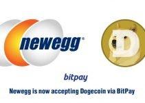 Newegg ora accetta Dogecoin per pagamenti tramite BitPay