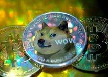 Dogecoin sta mantenendo i suoi incredibili guadagni di prezzo del 3.000%