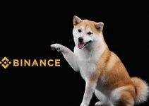 Il prezzo di SHIB sale alle stelle poiché Binance elenca il rivale di Dogecoin Shiba Inu