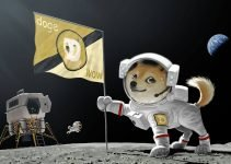 DOGE-1 Mission to the Moon: Dogecoin Payment Accepted by SpaceX