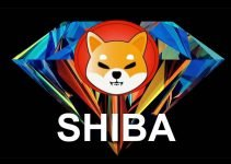Perché la moneta Shiba Inu ha visto il suo valore aumentare così tanto questa settimana?