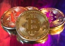 """David Gokhshtein ha notato la correzione """"super necessaria"""" e ha detto che il prezzo del bitcoin raggiungerà $ 80.000"""