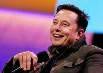 Elon Musk spinge Baby Doge sotto i riflettori, Meme Coin vola!