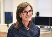Cathie Wood di ARK ribadisce la sua previsione del prezzo di $ 500.000 Bitcoin, confrontando le migliori criptovalute con il settore immobiliare e i mercati emergenti